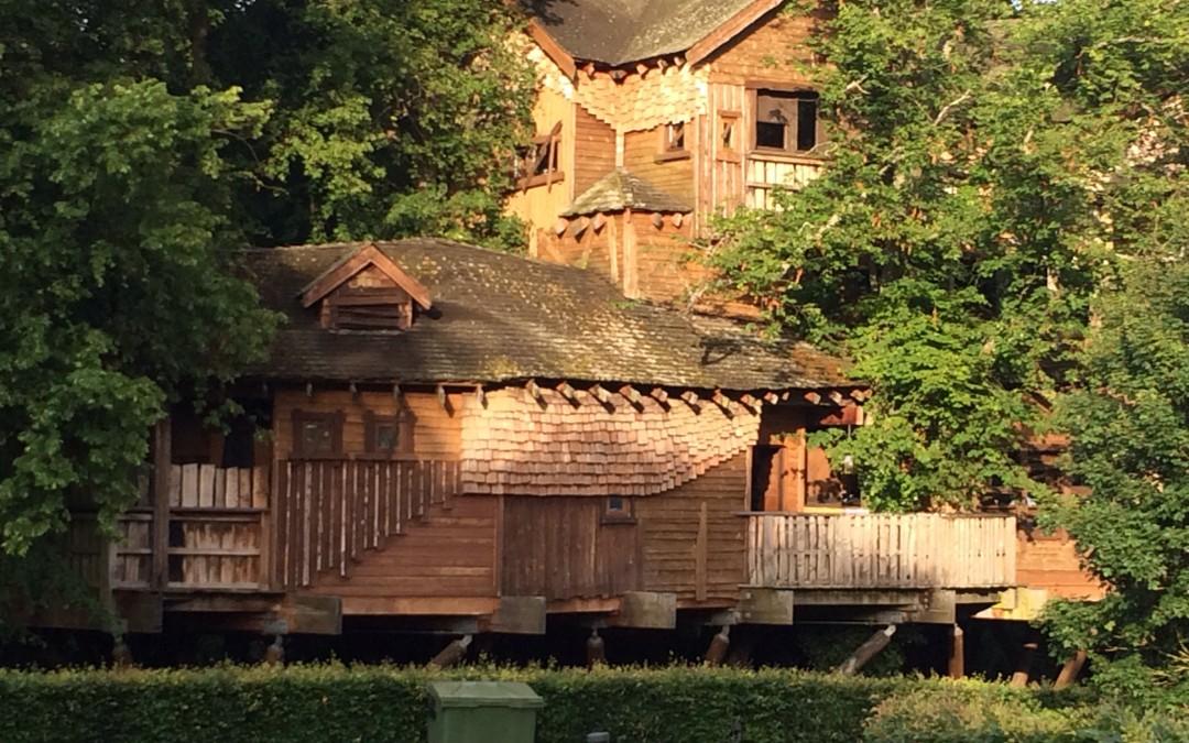 Deadbeats in a Treehouse!